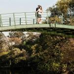 Pedro e Jessica - Senoide Producoes - Casamento Show (3)