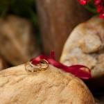 Maria e Edson - Fotografia de bodas de ouro - casamento show - senoide producoes (5)