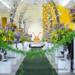 Casamento Lynele  e Rodolpho - Casamento Show - Senoide Producoes (1)