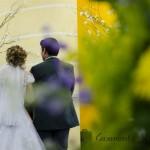 Casamento Lynele  e Rodolpho - Casamento Show - Senoide Producoes (4)
